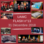 flash-n13