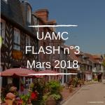 flash-n3-mars-2018
