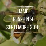 flash-n9-septembre-2018